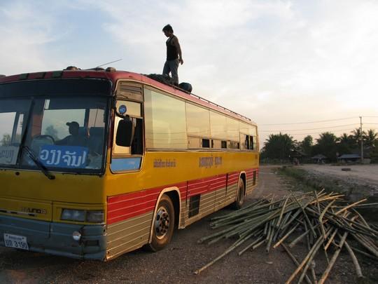 Autobus bamboo