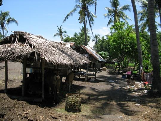 Balijskie chatki