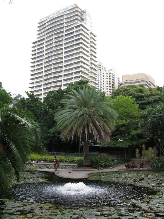 Park w centrum Brisbane