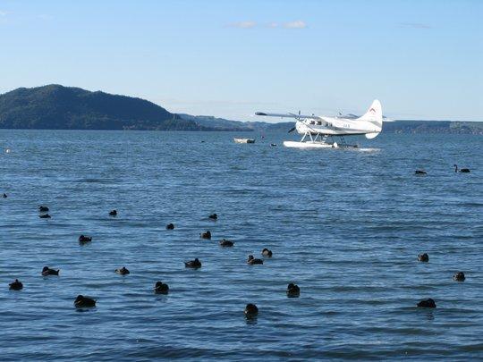 Jezioro Rotorua
